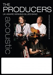 Poster_2013_acoustic